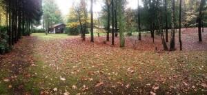 Mini-camping met recreatieverblijf